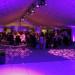 White dance floor - starlight - Violet Gobos
